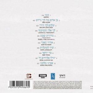 שירת רבים 2 | דוד ד'אור